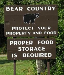 Bear_country